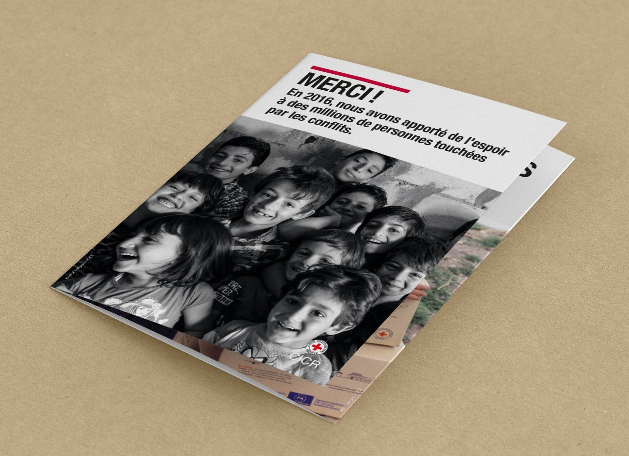 Fabien_cuffel_Bilan_CICR_leaflet_2017