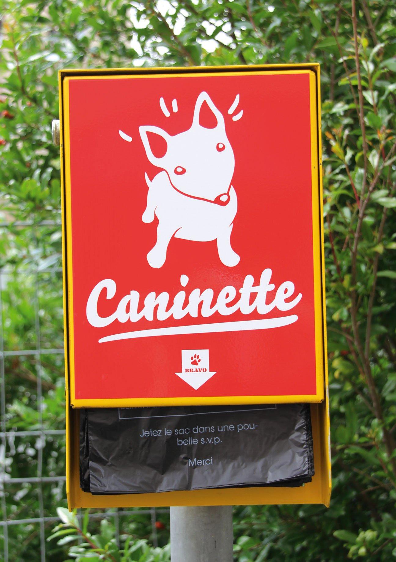 Fabiencuffel_Ville_Geneve_Caninette