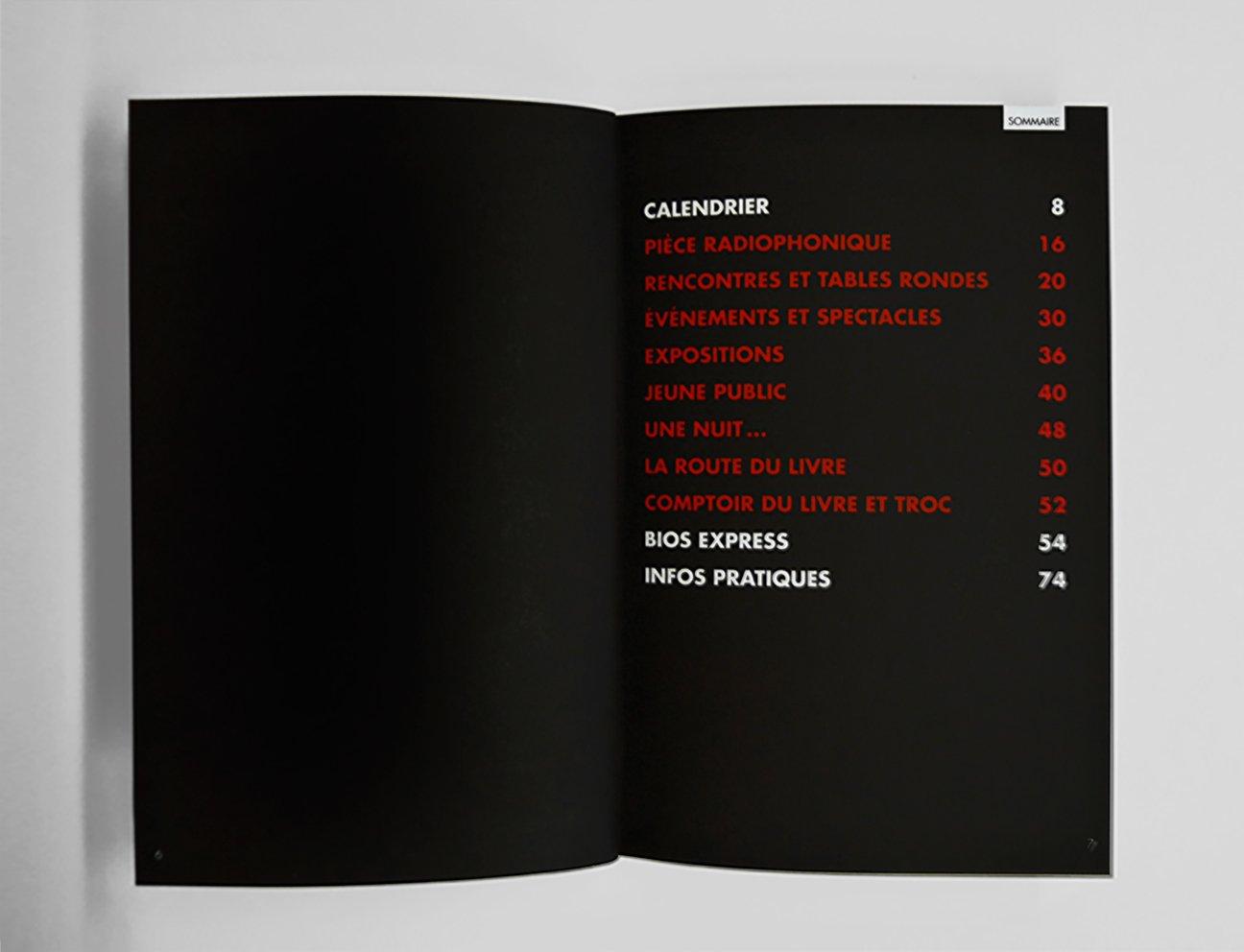 fabien_cuffel_book_festival_litteraire_fureur_lire_2011_inter